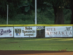 3-Field Banners 2