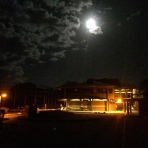 moon overwalter